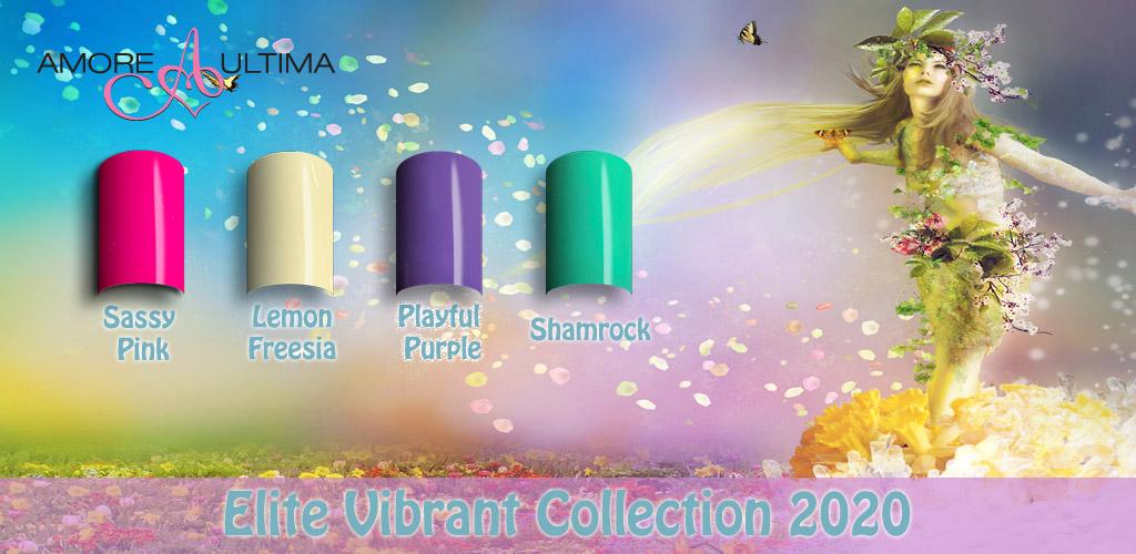 Elite Vibrant Collection